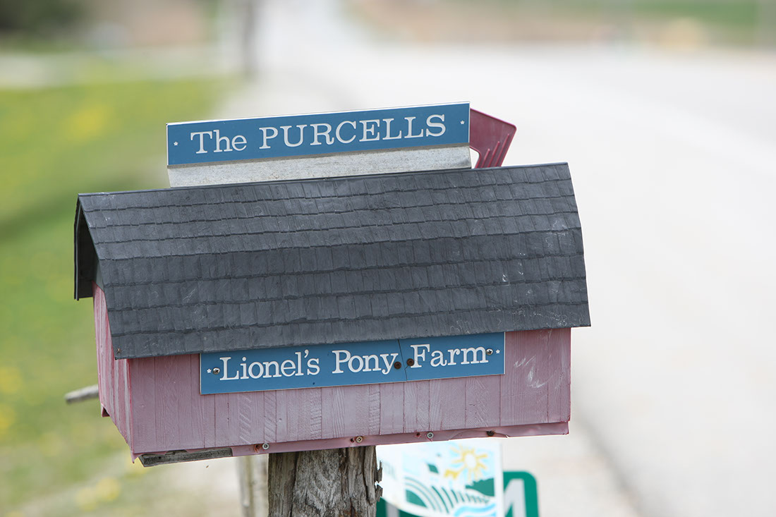 mailbox of Lionel's Farm in Stouffville